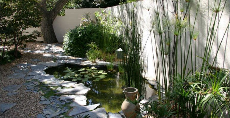 pond design malaysia affordable and tempting scapexpert