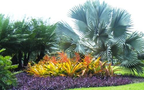 Tropical Garden design Malaysia | All Time Favorite ...