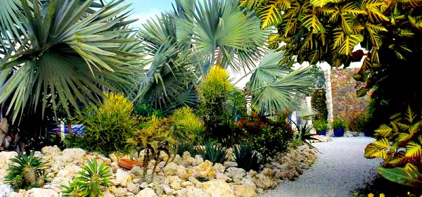 Garden Design Tropical exellent garden design tropical ideas google search gardening