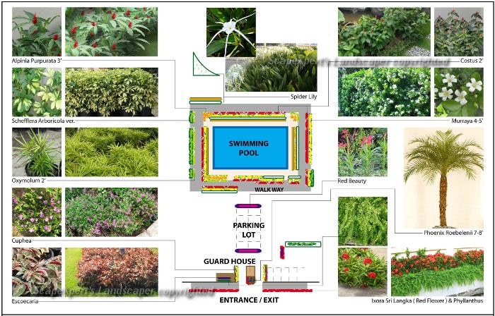 Landscape pictures garden design portfolio in malaysia for Backyard design ideas malaysia